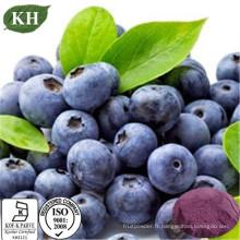 Extrait naturel pure d'extrait de baies d'açai Anthocyanidines, proanthocyanidines et polyphénols,