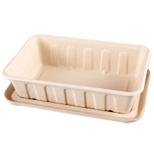 New Arrival  in USA &Europe market bagasse pulp lunch box 2500ml 3000ml