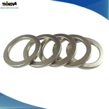 Hot Sale Sintered Pemanent NdFeB Ring Shape Magnets for Various Loudspeakers
