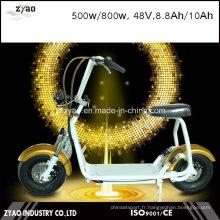 Scooter électrique 800W Citycoco / Seev / Woqu 2 roues auto-équilibrées