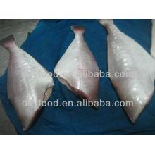Gefrorenes Hautfisch Leder