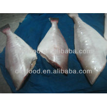 Pele de Peixe Esfolado