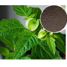 Extrato de plantas de algas com aminoácido natural
