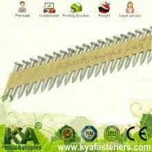 34 grados de cintas de papel galvanizado pegado clavos