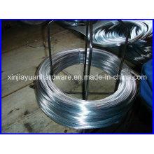 Hot DIP Galvanized Iron Wire /Electro Galvanized Iron Wire