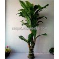 2015 Yiwu Wholesale Artificial Banana Tree For Decor
