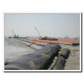 Geotex Geotxtile Géotube Geotagique pour Embankment en Plage