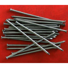 Common Iron Wire Nail in Good Quality