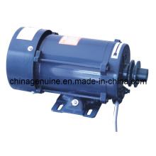 Zcheng Motor à Prova de Explosão Motor Zcmt-220V