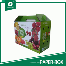 Color Printed Fresh Fruit Packaging Box Gift Box with Handle