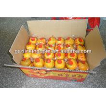 Honey Lugan from China 70mm