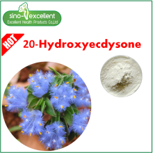 20-Hydroxyecdysone Cyanotis Arachnoidea Extract