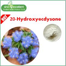 20-Hydroxyecdysone