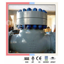 Class 1500 RF End Wcb Swing Check Valve in 3""