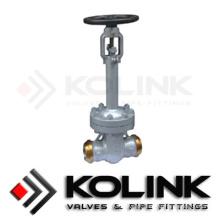 Válvula de retenção de vedação de fole, extremidade de solda de topo