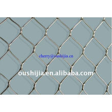 Stainless Steel Zoo Wire Mesh(factory)
