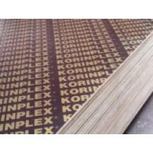 Contreplaqué en fibre de verre 18mm Shandong / Contreplaqué de construction