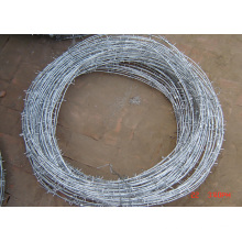 Barbed wire / Razor Bared Wire Low Price