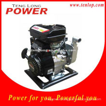 Fast Seller Italy Water Pump for Sale