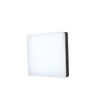 Lampe d'extérieur 21 W P65 Ellipse Bulkhead