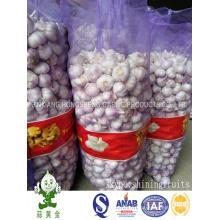 Los 4.5cm Ajo blanco normal 20kgs sueltan el paquete de China