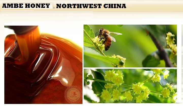 Buckwheat Honey 5