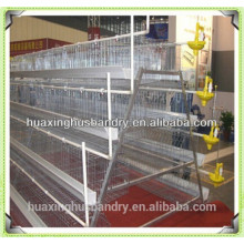 Pousses de volaille de prix de cage de poulet