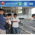 High Strength Poultry Chicken Cages for Chicken Farm
