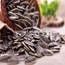 2019 Sunflower seed market price inner mongolia seeds