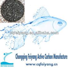 Coque de noix de coco charbon actif pour la purification de l'eau
