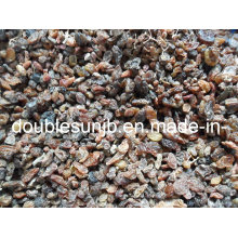 Industrial Raisin for Making Vinegar or Wine or Concentrate