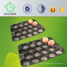 La boursouflure perforée a exporté le plateau d'emballage en plastique thermoformé pour l'usage frais de pêche populaire dans le marché du Chili