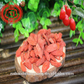 Bagas convencionais de Goji do insecticida da categoria 380 da baga B de Goji baixas