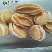 Frozen Abalone Farmed Good quality
