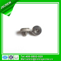 Socket Drive Knurled Head Screw