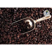Medicina de tiempo sexual medicina a base de hierbas granos de cacao crudo orgánico