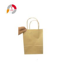 Flexible Design Paper Gift Bag with Handle