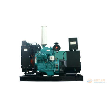 Customized for Cummins Diesel Generators 25kva Cummins Diesel Generator Set Price export to Niger Factory