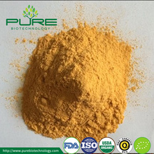 Organic Spray Dried Sea buckthorn Powder