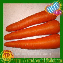 Qingdao Fresh Carrot Carrot Seeder