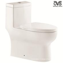 salle de bains upc / cupc toilette intestin
