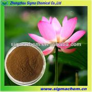 Lotus Leaf Plant Extract 2% 10%
