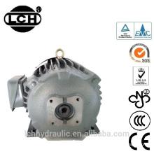 Kaufen Sie direkt vom Hersteller Bldc Typ Motor