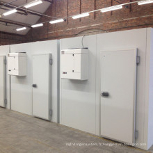 Système professionnel de refroidissement de chambre froide de stockage