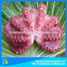 wholesale big size delicious frozen fresh octopus