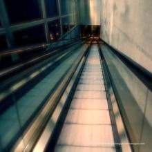 Электрический Крытый Торговом Центре Жилой Пассажира Механическая Тротуаре