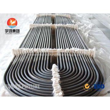 Intercambiador de calor U curva tubos SA213 TP304L TP304H