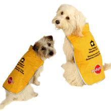 Dog coat, warm and cozy
