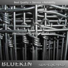 clôture soudée chaude de fil soudé par noeud fixe galvanisé