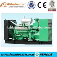 Made in China TBG series 250KW lpg gas generator price